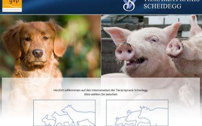 Website der Tierarztpraxis Scheidegg mit vielen spannenden Vorträgen